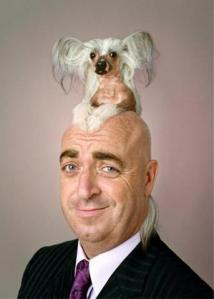 dog-toupee